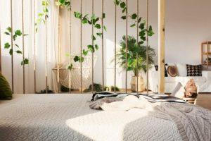 Posso dormir com plantas no quarto?
