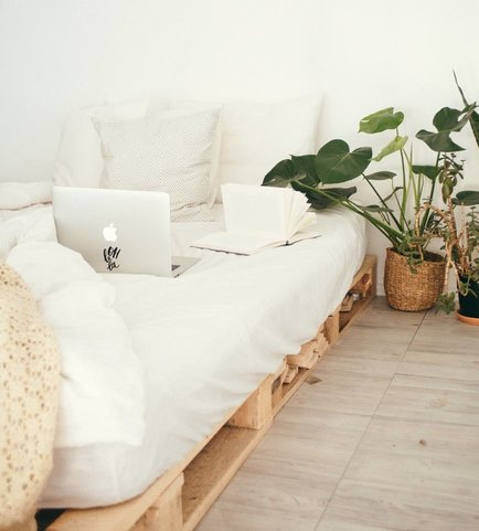 Devo dormir com plantas no quarto?